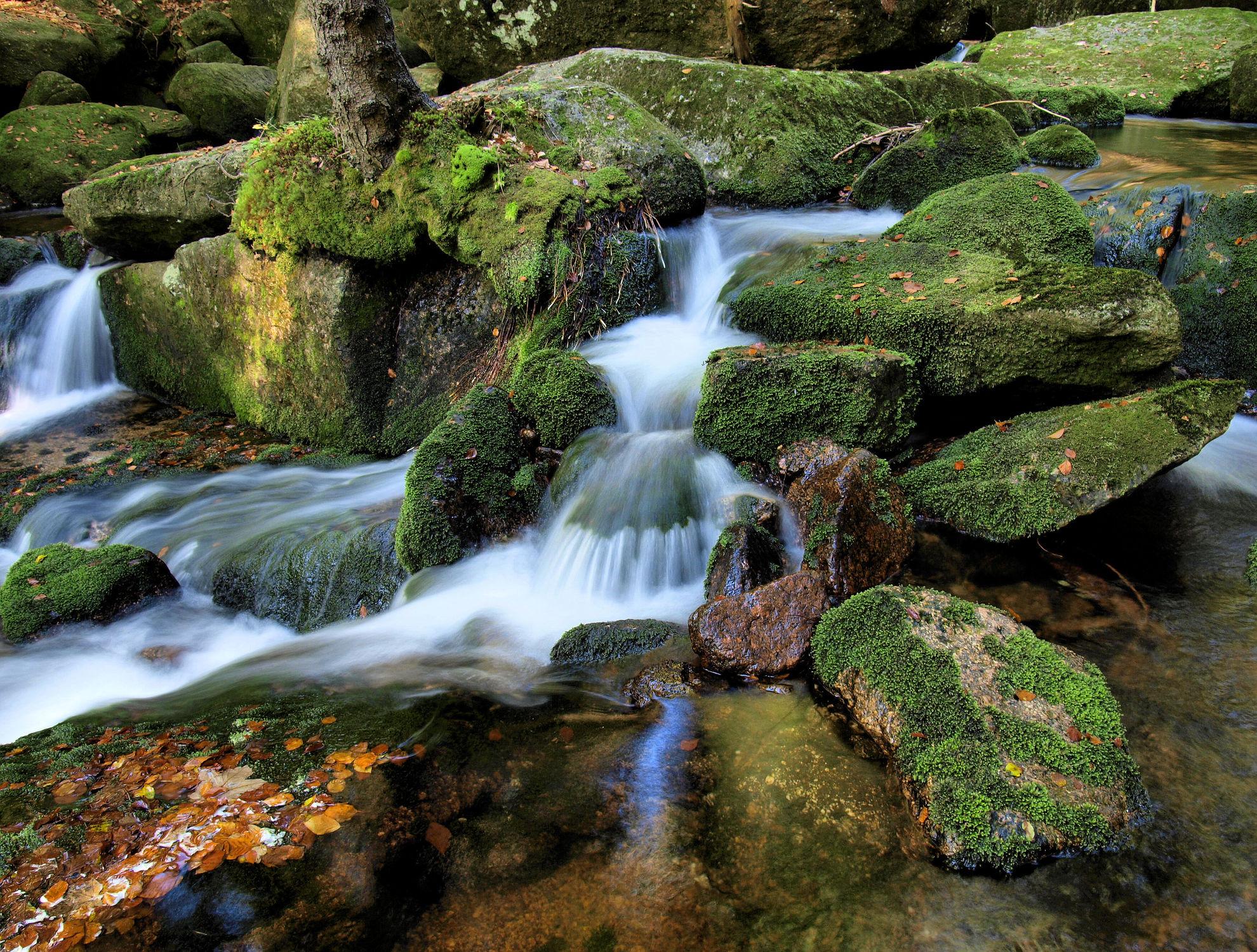 Bild mit Gewässer, Flüsse, Wasserfälle, Bach, Wasserfall, Elfen, Wasserläufe, Fluss, Feenland, Elfenland, feen