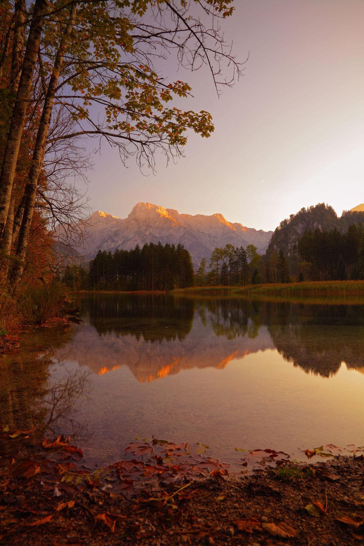 Bild mit Natur, Bäume, Gewässer, Herbst, Wald, Baum, See