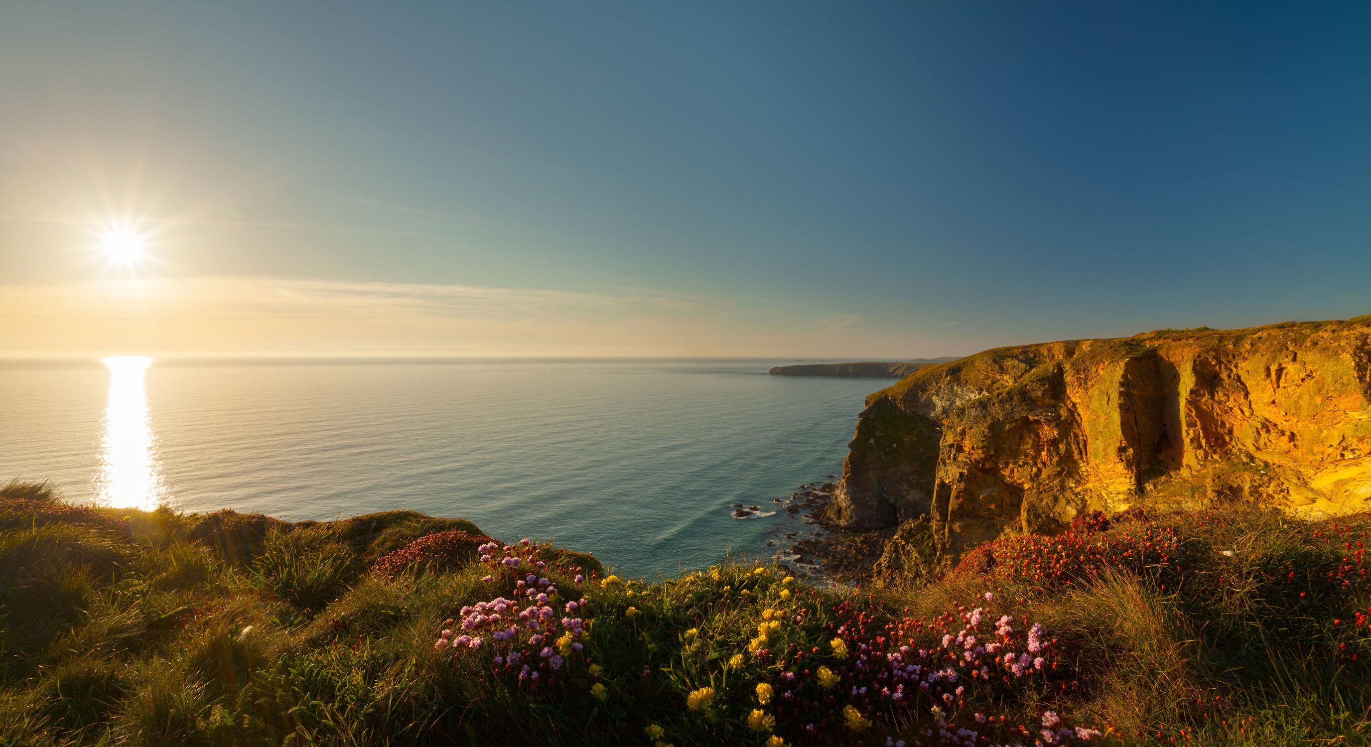 Bild mit Natur, Gewässer, Blumen, Meer, Blume, Nature, See, Feld, Küste, Felder, Weide, Weiden