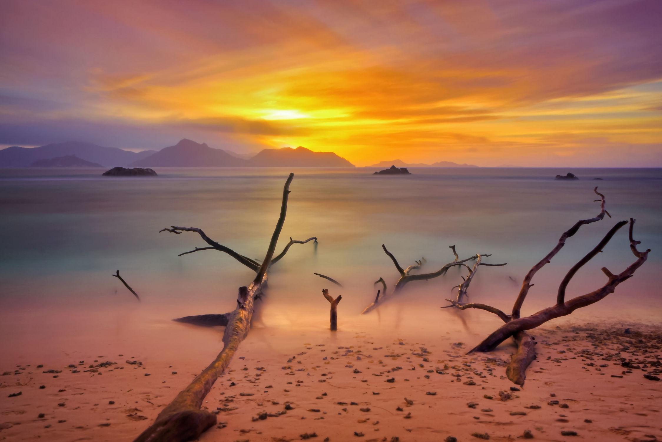 Bild mit Natur, Wasser, Gewässer, Sonnenuntergang, Sonnenaufgang, Baum, Am Meer