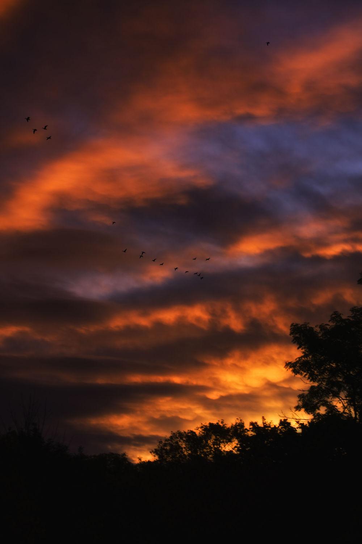 Bild mit Himmel, Wolken, Sonnenuntergang, Sonnenaufgang, Morgenrot, Wolkenhimmel, Wolke, Morgenlicht, morgen