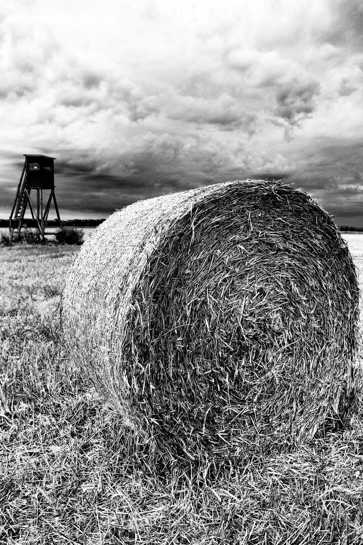 Bild mit Stroh, Strohballen, Futter, schwarz weiß, landwirtschaft, Ãcker, SW, Country