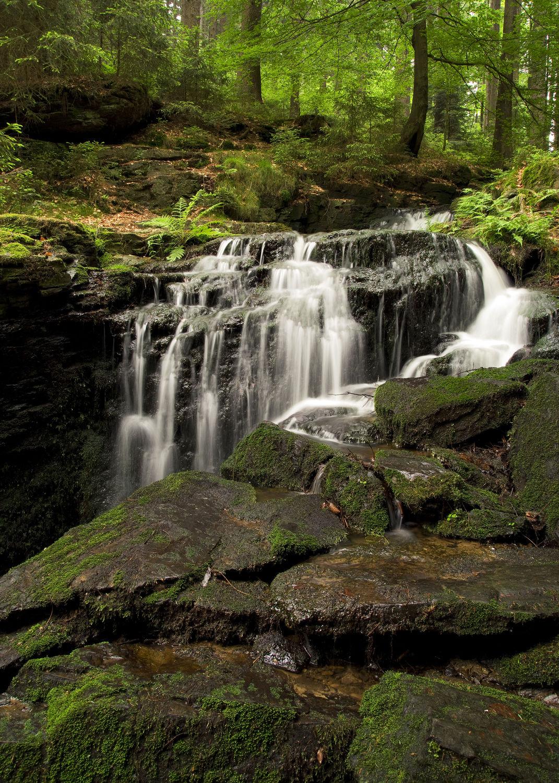 Bild mit Natur, Wasser, Gewässer, Wälder, Wasserfälle, Wald, Landschaft, Wasserfall