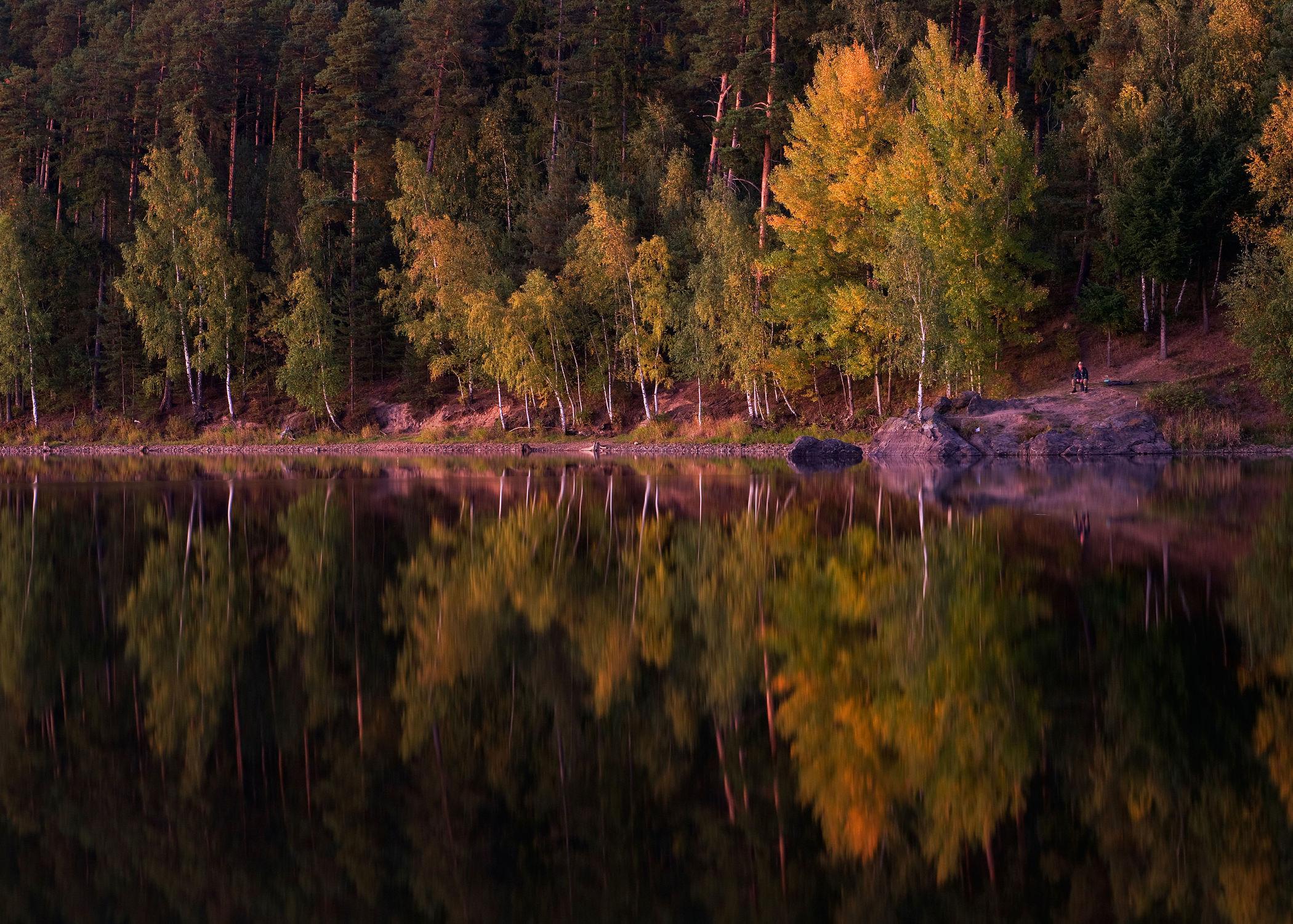Bild mit Natur, Wasser, Landschaften, Gewässer, Wälder, Seen, Wald, Landschaft, See, Ufer