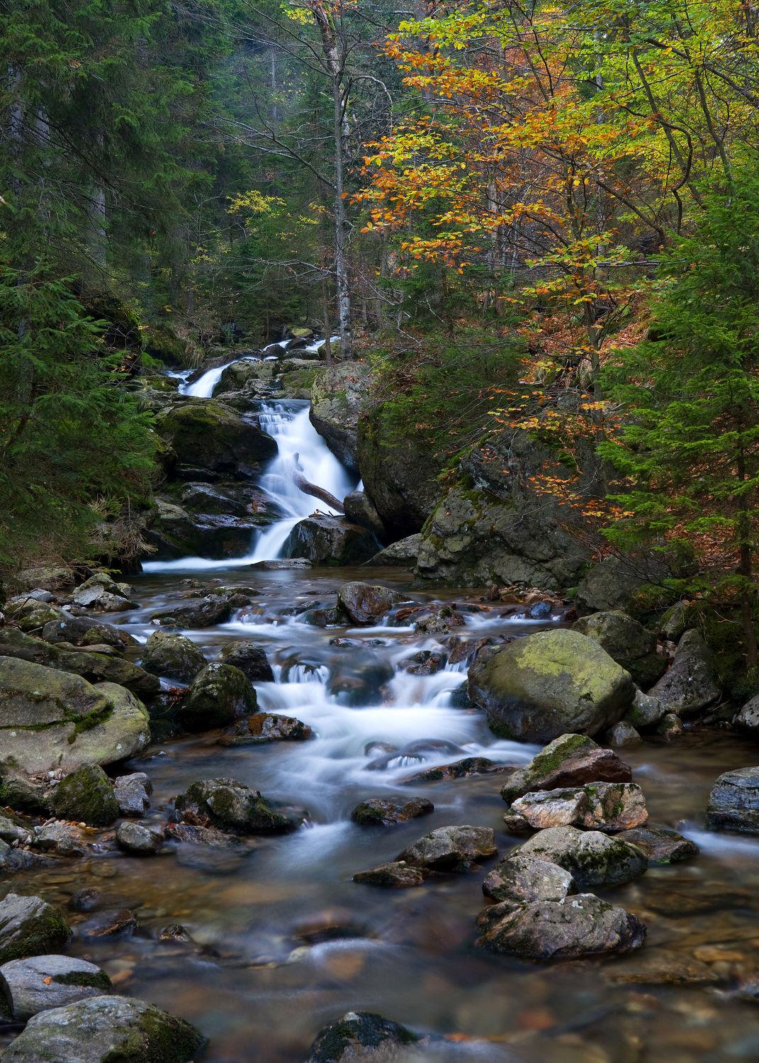 Bild mit Natur, Wasser, Landschaften, Wälder, Herbst, Wasserfälle, Wald, Landschaft, Wasserfall