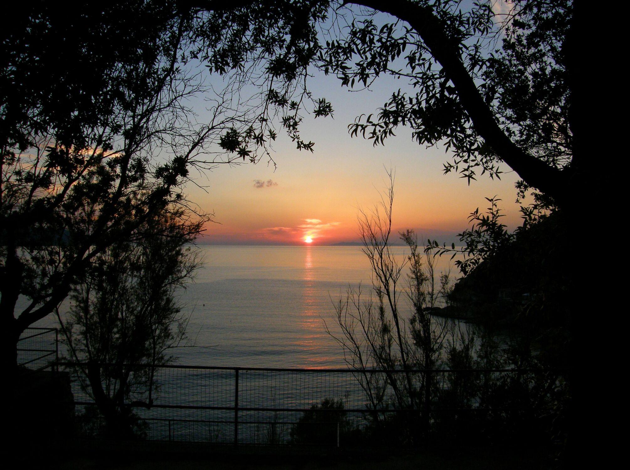 Bild mit Bäume, Strände, Sonnenuntergang, Italien, Sonnenaufgang, Baum, Strand