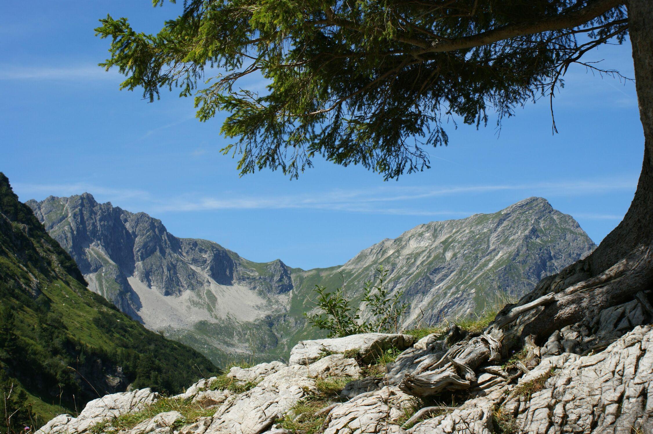 Bild mit Berge, Tanne, Tannen, Bergwelten, berg, tal