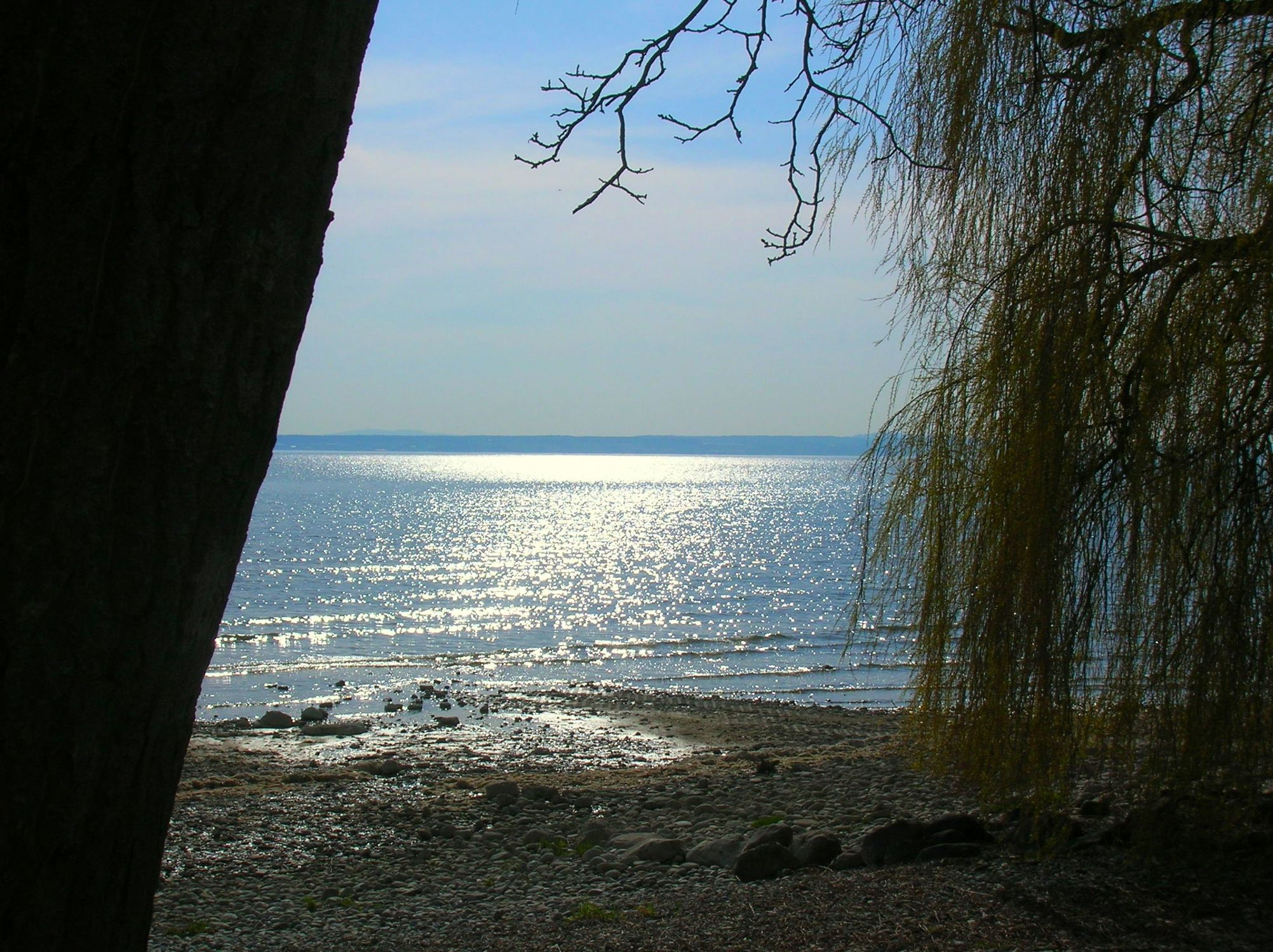 Bild mit Ruhe am See
