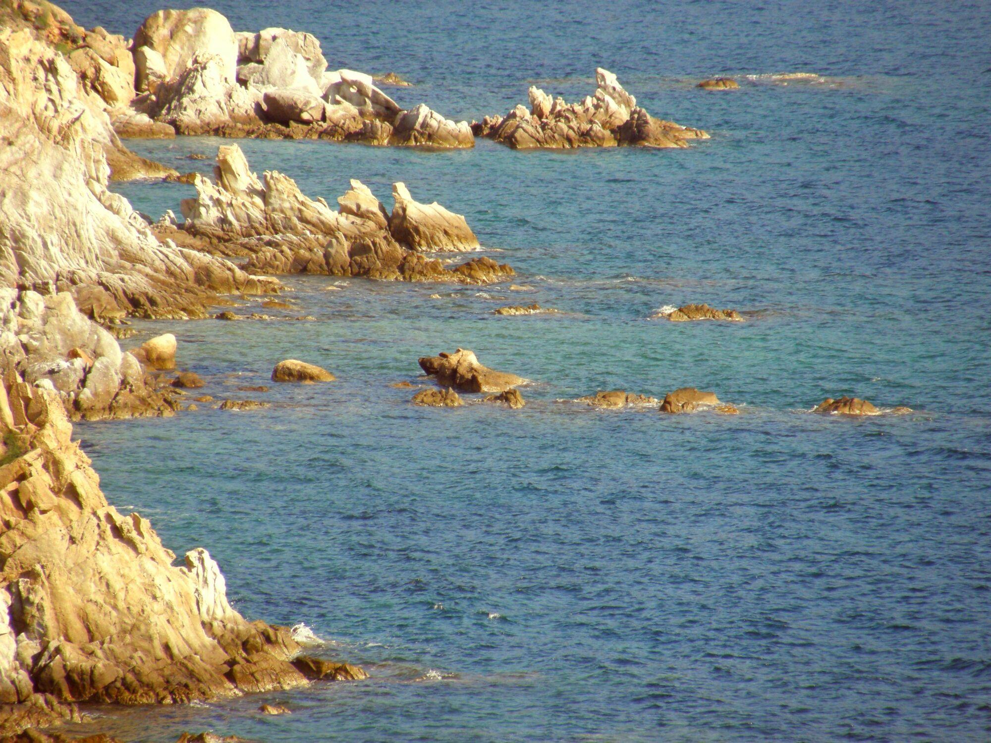 Bild mit Sehnsucht nach Meer