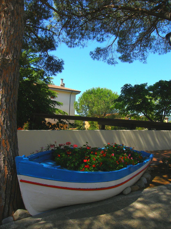 Bild mit Blumen, Boote