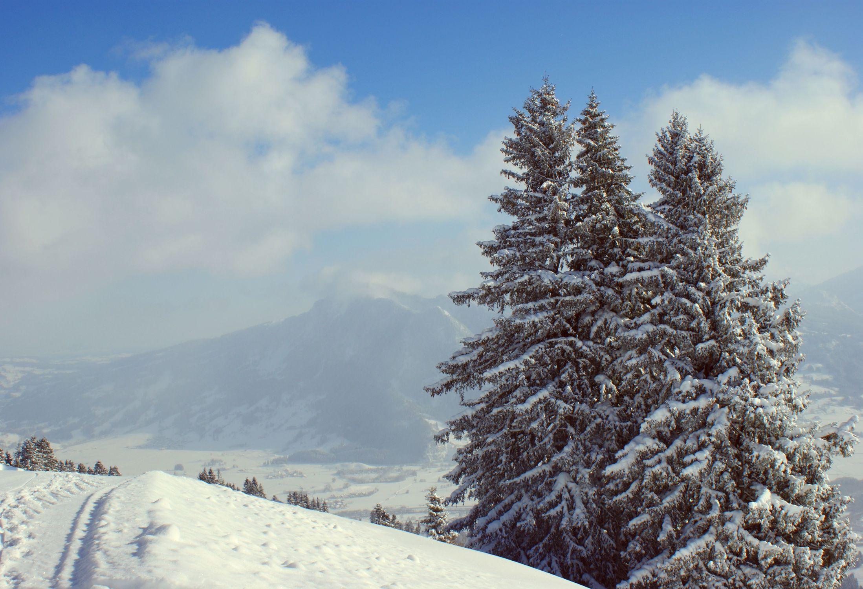 Bild mit Landschaften, Berge, Winter, Winter, Schnee, Wege, Tannen, Landschaft, winterlandschaft, berg, schneelandschaft