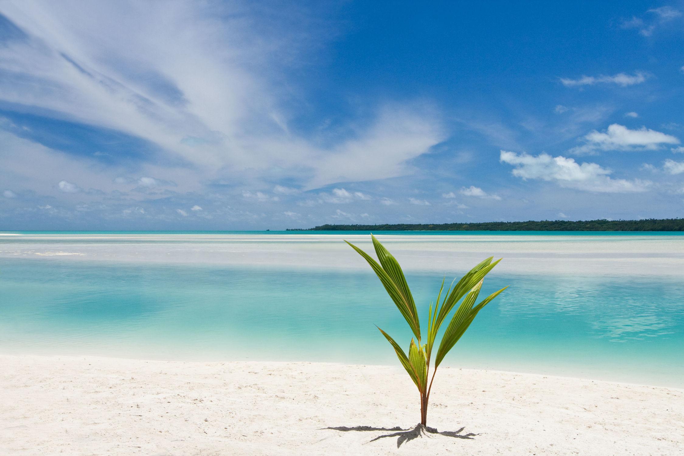 Bild mit Wasser, Gewässer, Strände, Strand, Meer, Südsee, ozean