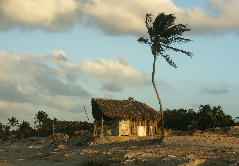 Bild mit Strand, Hütte