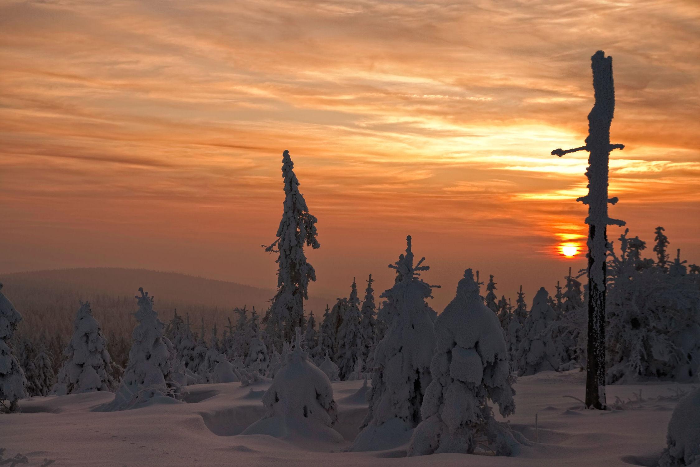 Bild mit Landschaften, Schnee, Wälder, Tannen, Wald, Landschaft, Winterlandschaften, Gebirge, fichtelgebirge