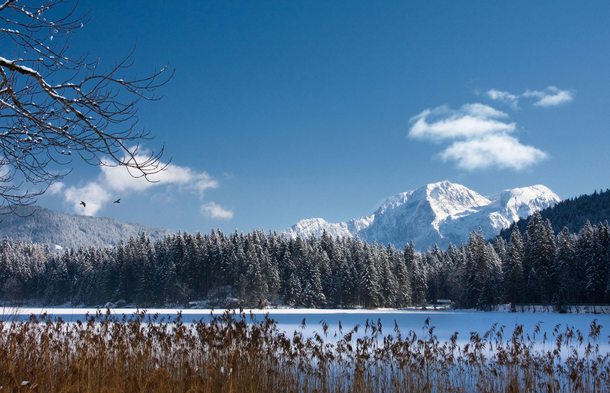 Bild mit Winterlandschaften
