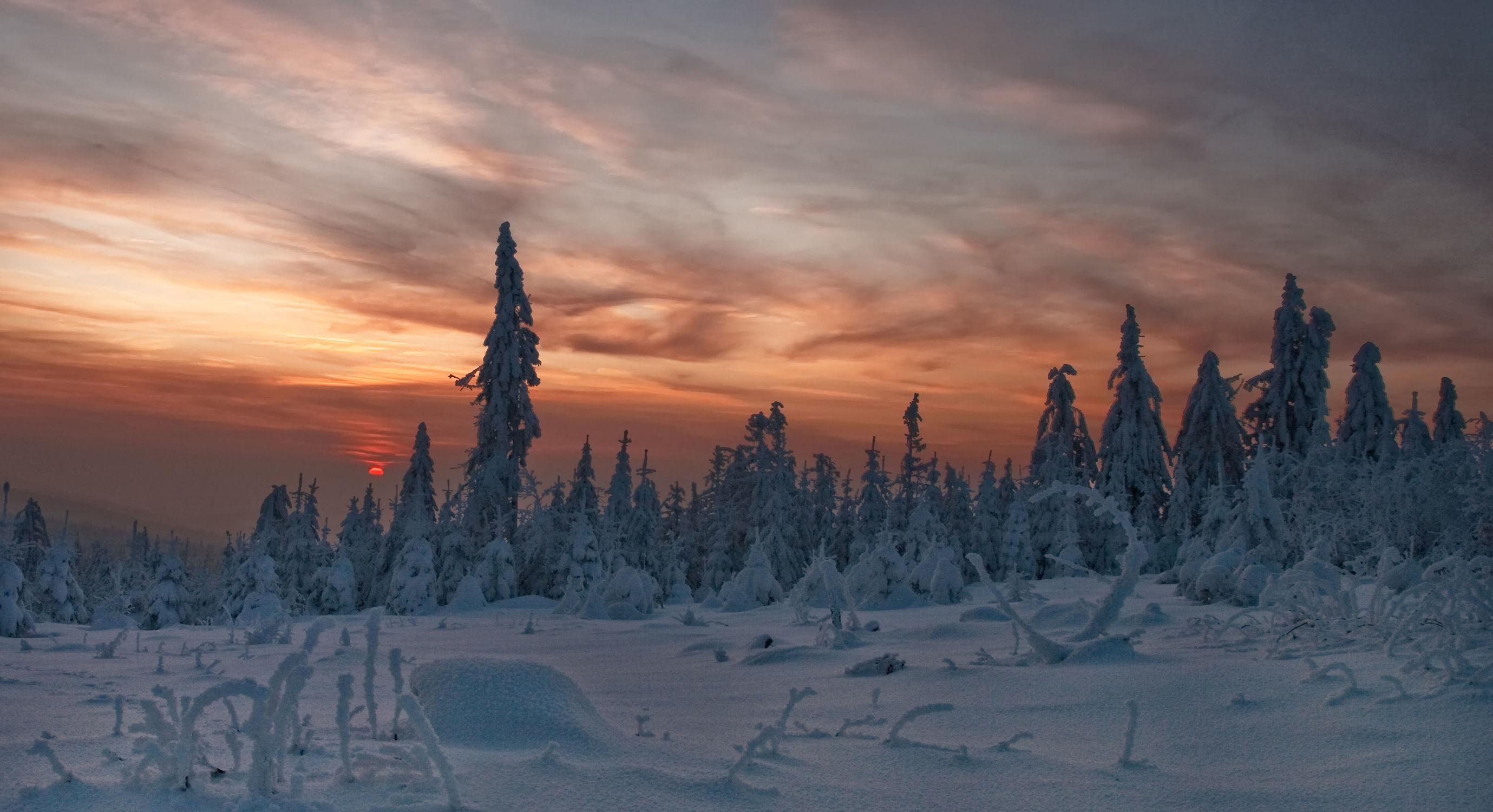 Bild mit Landschaften, Bäume, Winter, Schnee, Wälder, Wald, Baum, Landschaft, Winterlandschaften, Frost, Gebirge