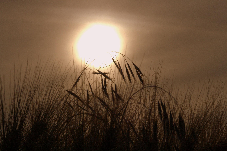 Bild mit Sonnenauf-und -untergänge