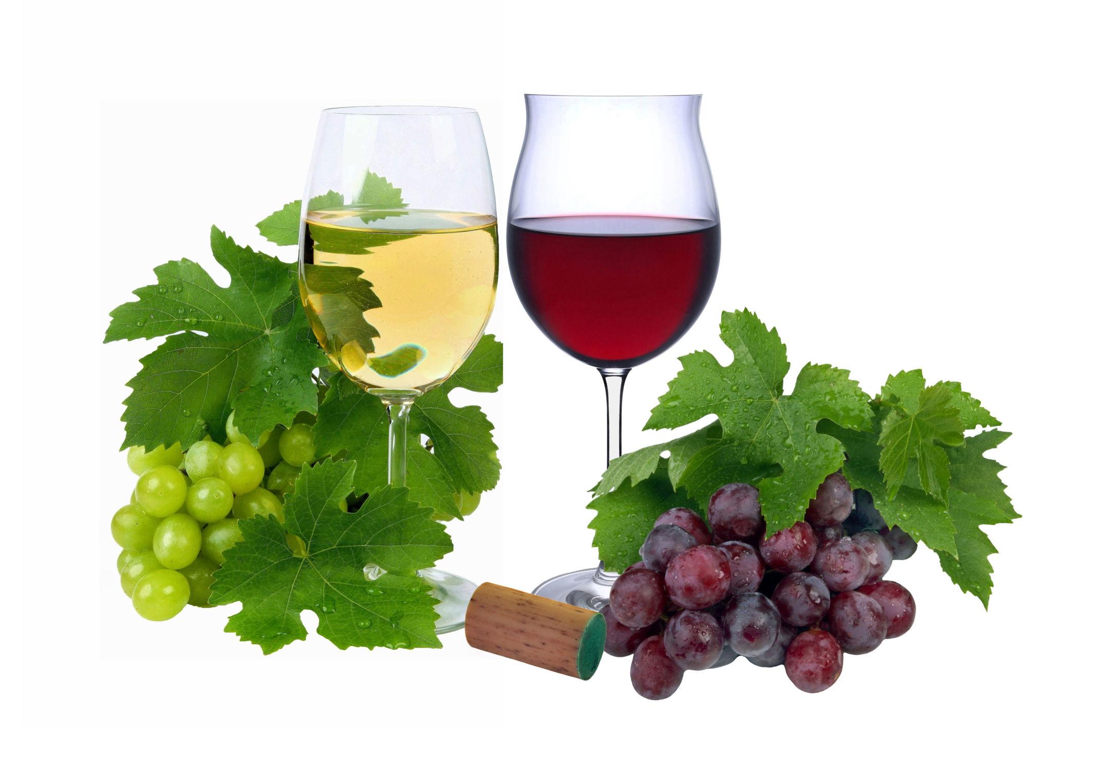 Bild mit Essen, Trinken, Weintrauben, Food, Wein, Getränk, Küche, Esszimmer, rotwein, rotweinglas, Weisswein, weißwein, weinblätter, weinlaub, weißweinglas, weissweinglas