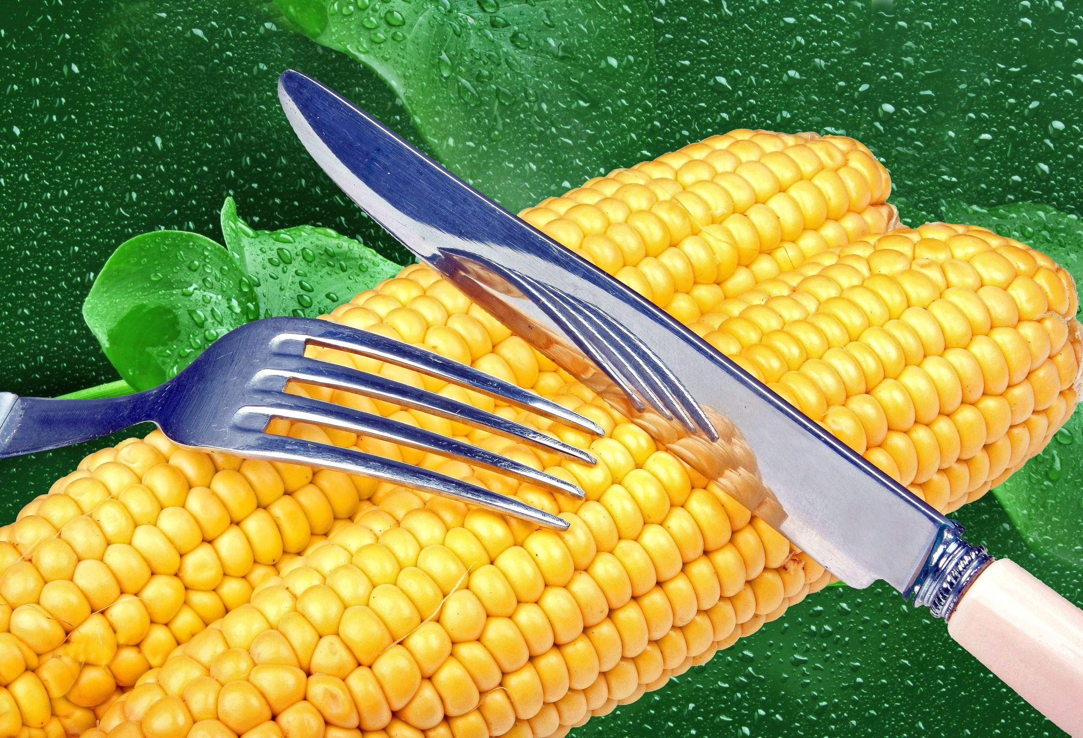 Bild mit Wasser, Blätter, Küchenbild, Nahrung, Blatt, Wassertropfen, Food, Stilleben, Küchenbilder, frisch, Ernährung, Küche, Esszimmer, Mais, Maiskolben, kochen, frische