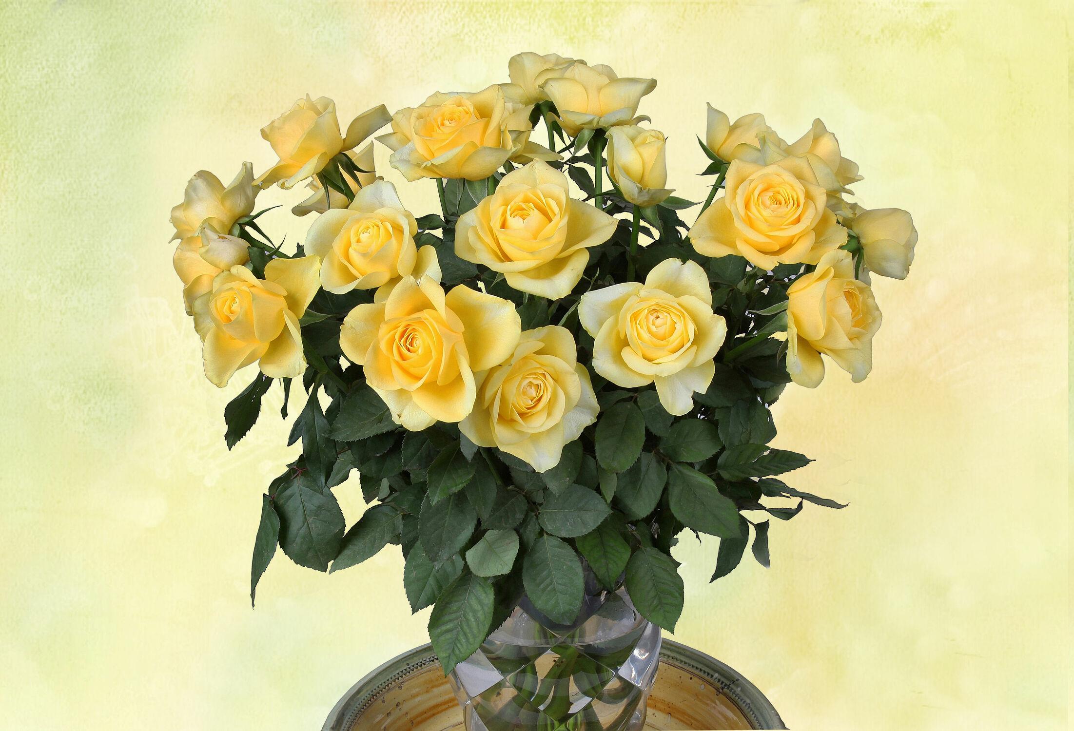Bild mit Blumen, Rosen, Blume, Rose, gelbe Rosen, Floral, Stilleben, Blüten, Florales, blüte, vase