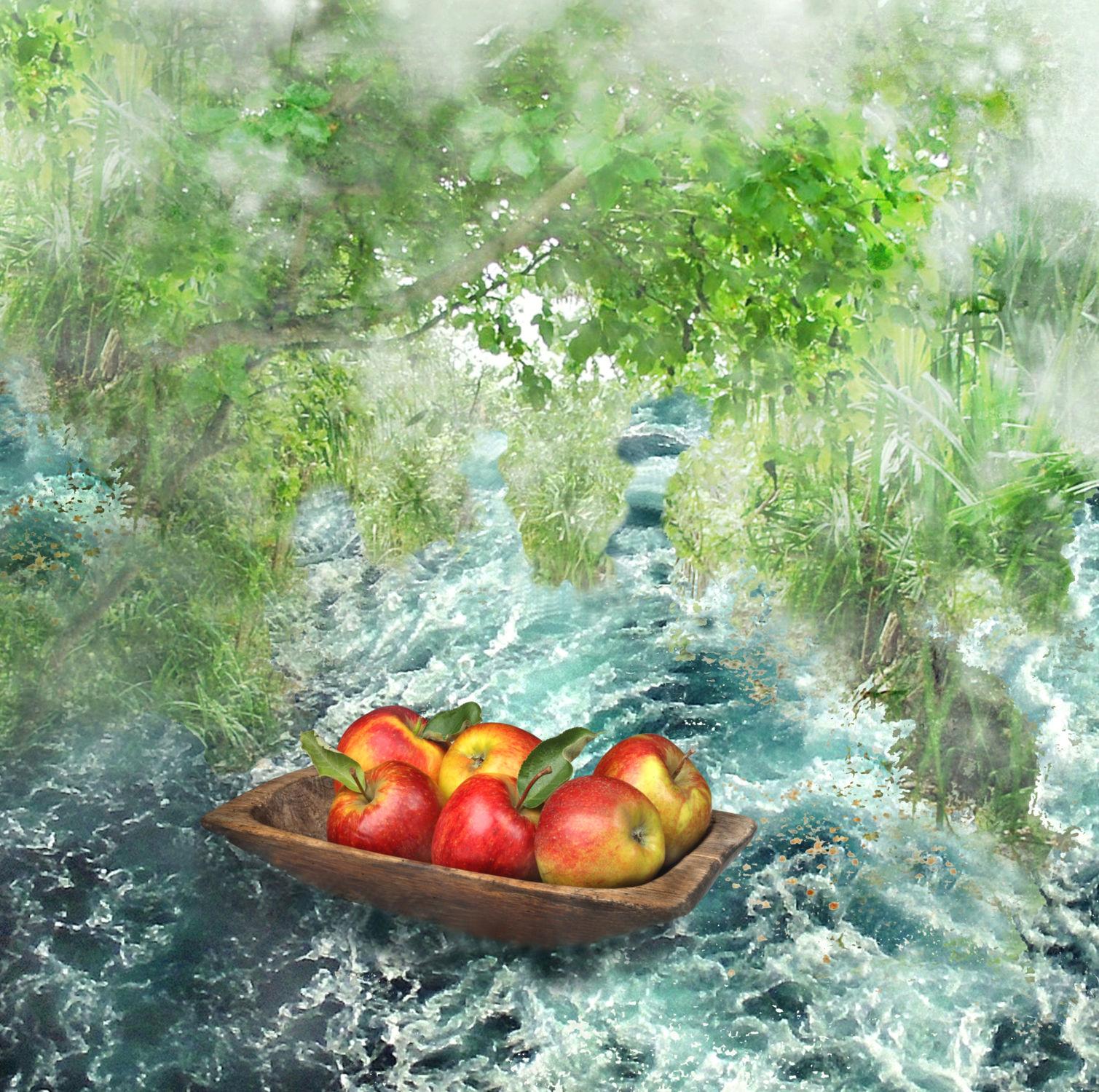 Bild mit Wasser, Gewässer, Früchte, boot, Frucht, Obst, Apfel, Apfel, garten, romantisch, Fluss, Traum, dream