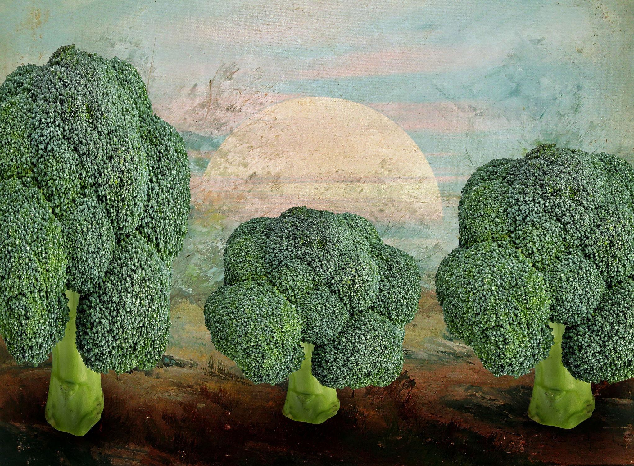 Bild mit Natur, Himmel, Wolken, Essen, Sonnenuntergang, Sonne, Gemüse, Nahrung, Abstrakt, Food, Toskana, Allee, Abstraktes, Ernährung, kochen, brokkoli