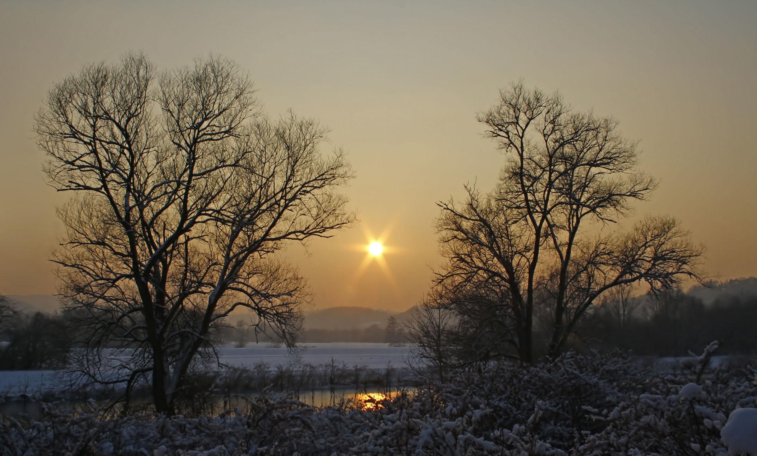 Bild mit Natur, Landschaften, Bäume, Winter, Schnee, Sonnenuntergang, Baum, Landschaft, Natur und Landschaft, Winterzeit