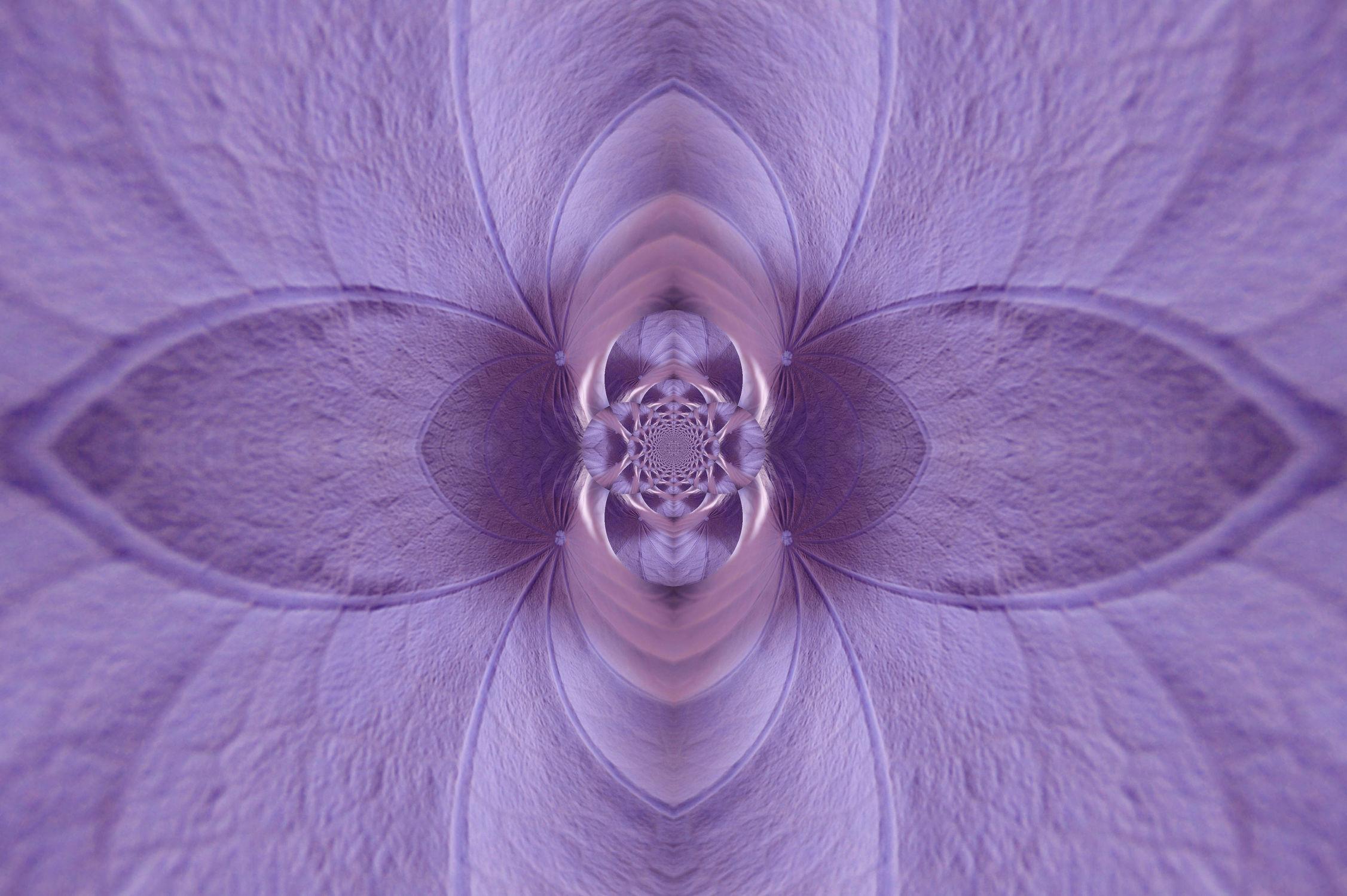 Bild mit verfremdete blumen