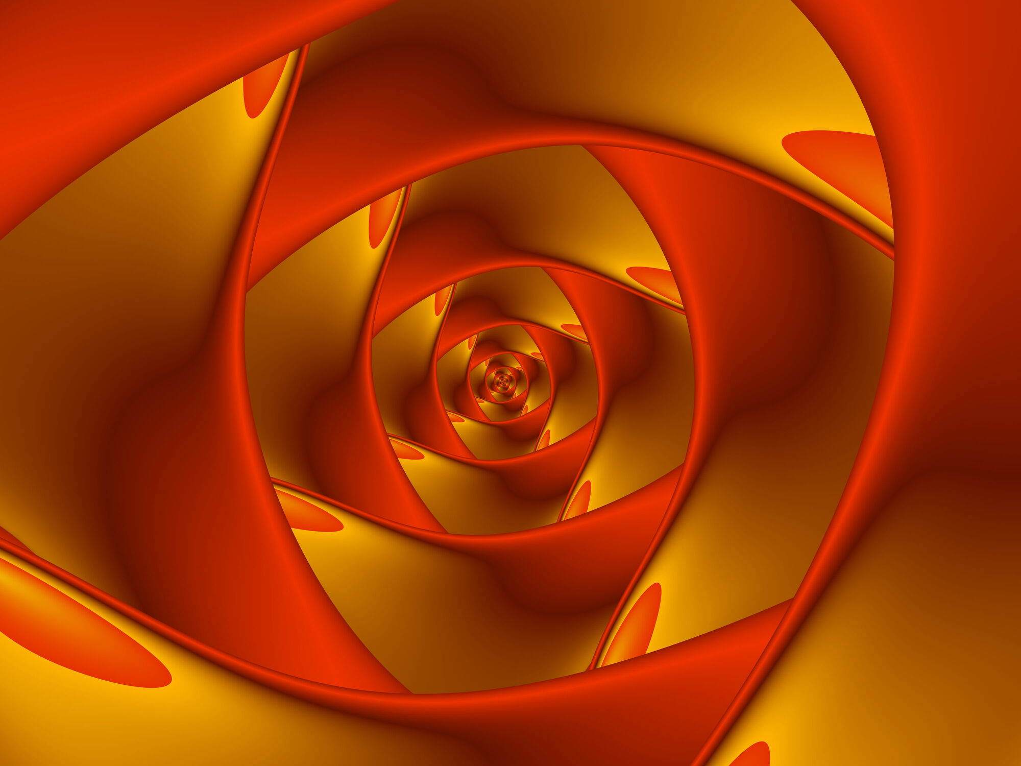 Bild mit Fraktale