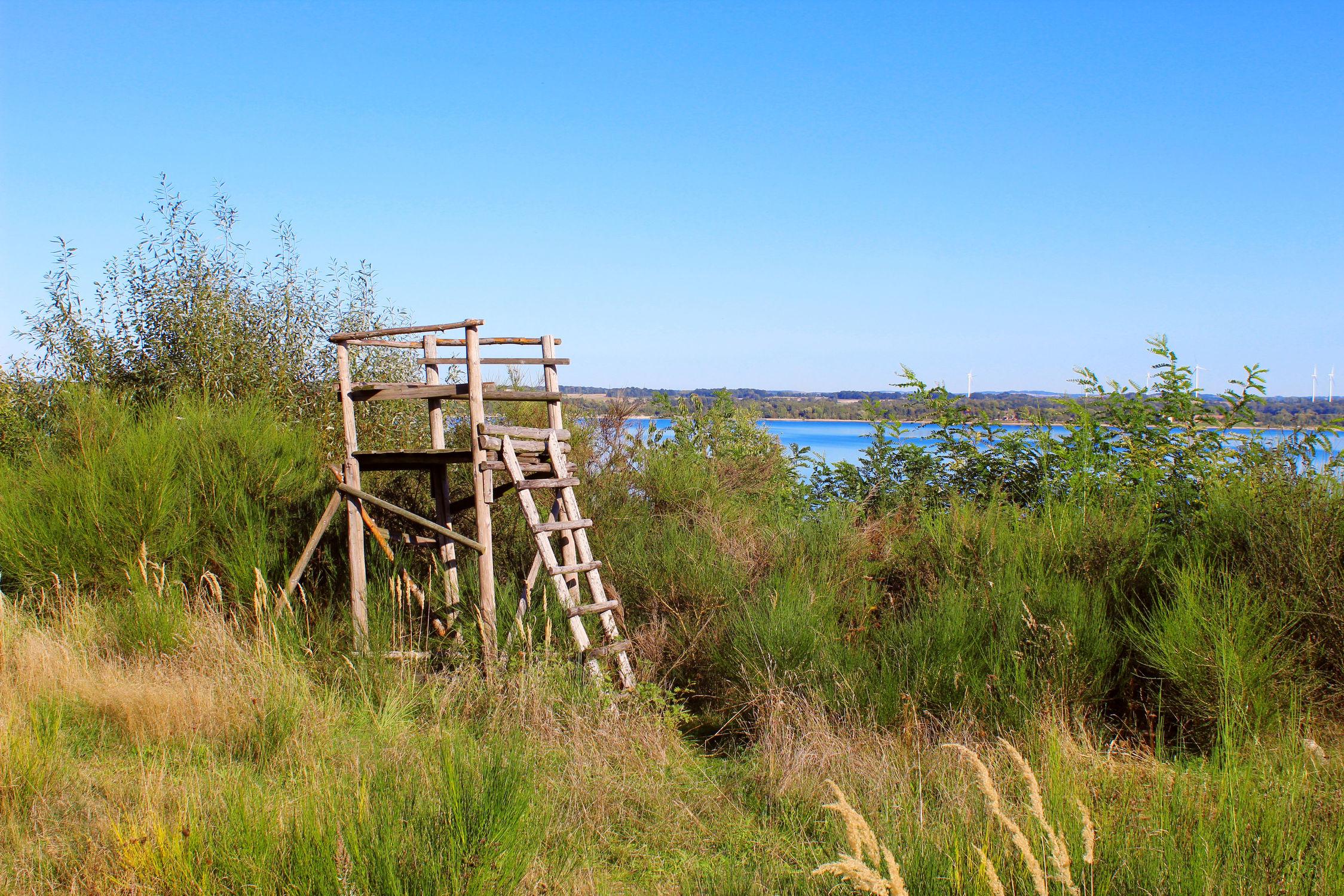 Bild mit Landschaft, Blauer Himmel, Berzdorfer See, Jäger Hochsitz, Jägerhochsitz, Hochsitz, landscape, Hochsitz am See