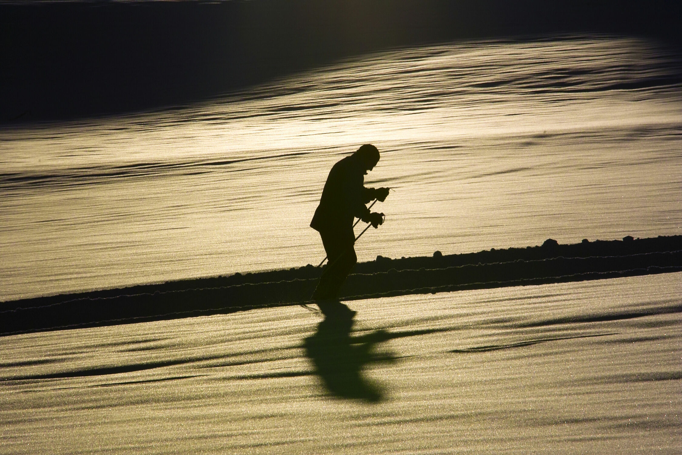 Bild mit Ski Langläufer