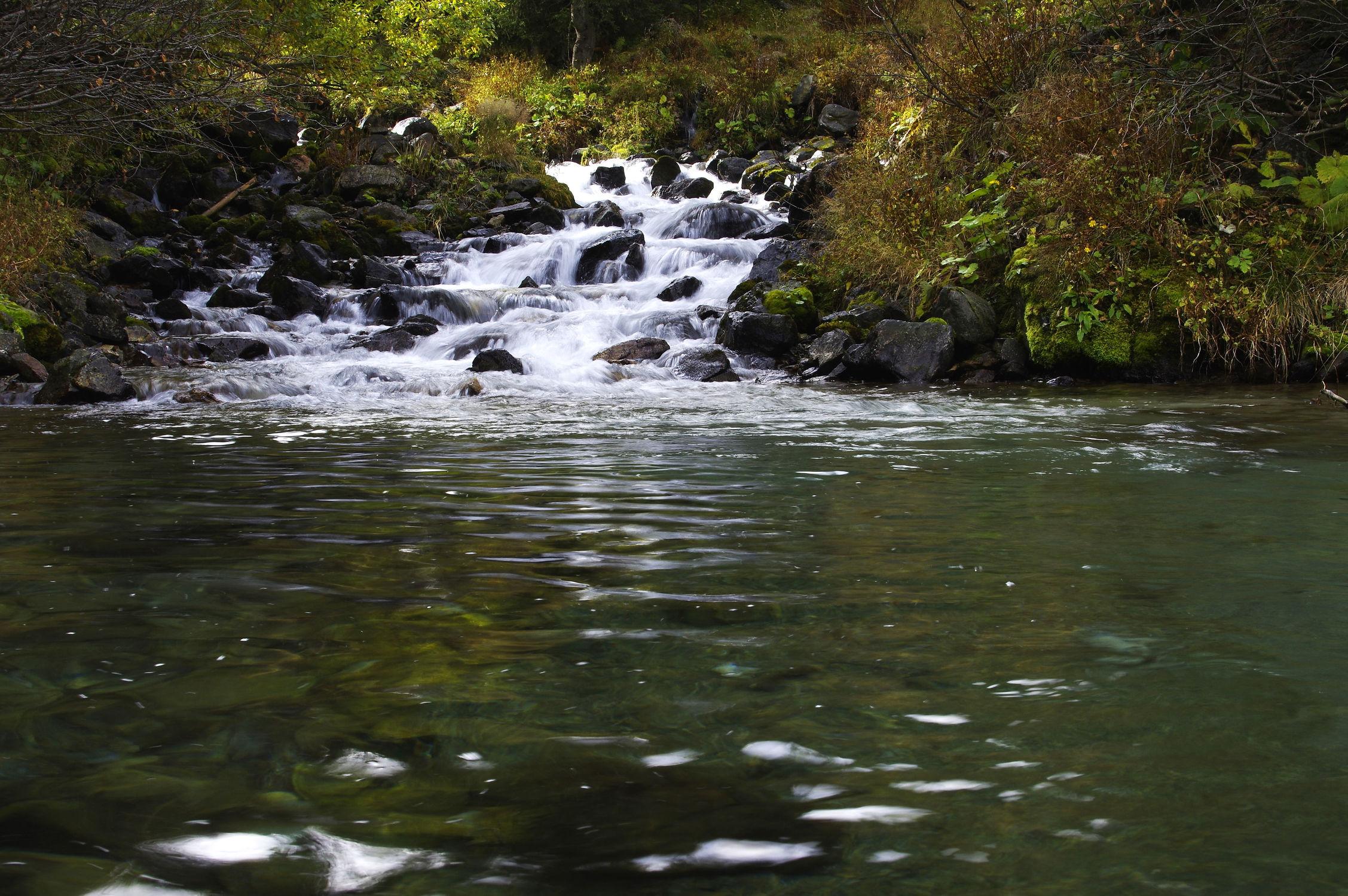 Bild mit Natur, Landschaften, Wälder, Flüsse, Felsen, Wald, Landschaft, Steine, Bach, Wasserfall, Fluss, Gestein, Bäche, Fels
