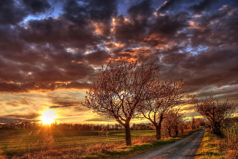 Bild mit Natur, Landschaften, Sonnenuntergang, Sonnenaufgang, Wege, Baum, Weg, Landschaft, Wiese, Feld, landscape, Felder, Felder & Wiesen, Wiesen, Feldweg