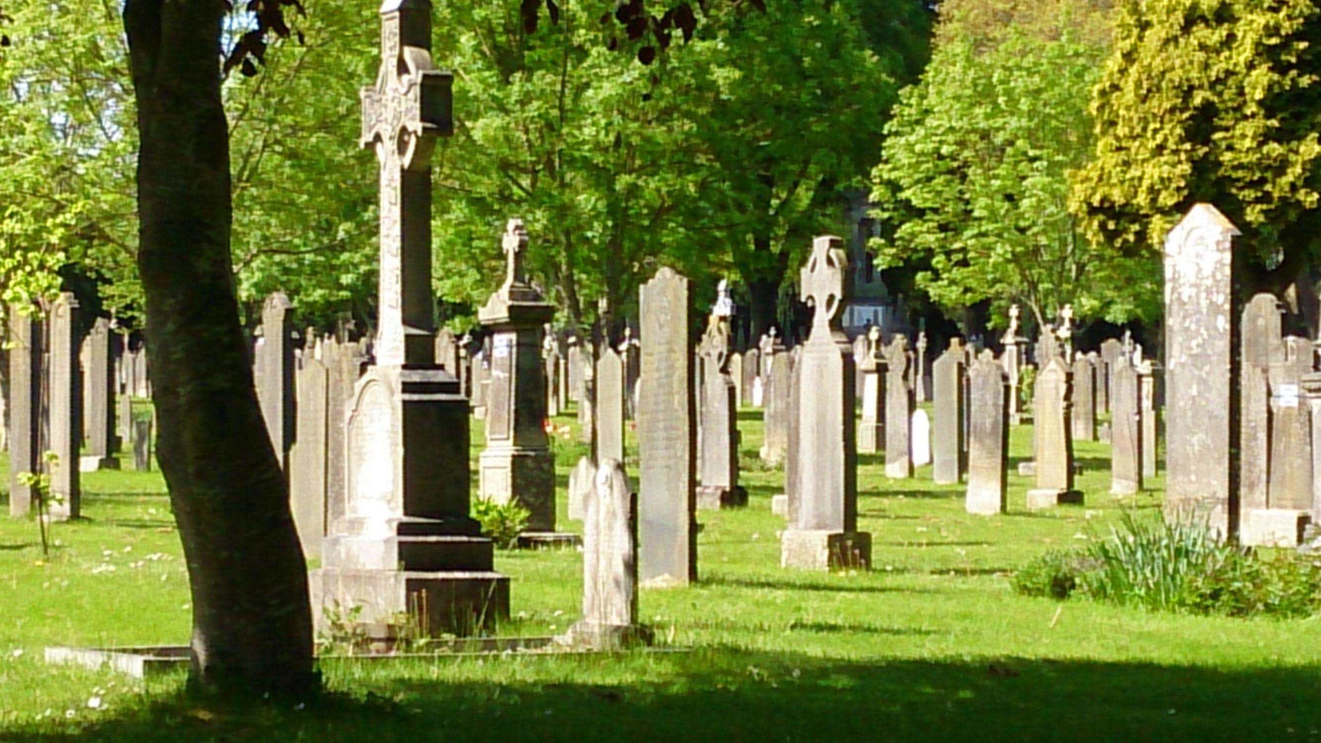 Bild mit Reisen, Friedhof, Dublin, Friedhöfe, Gräber, Grabsteine, Grabstein