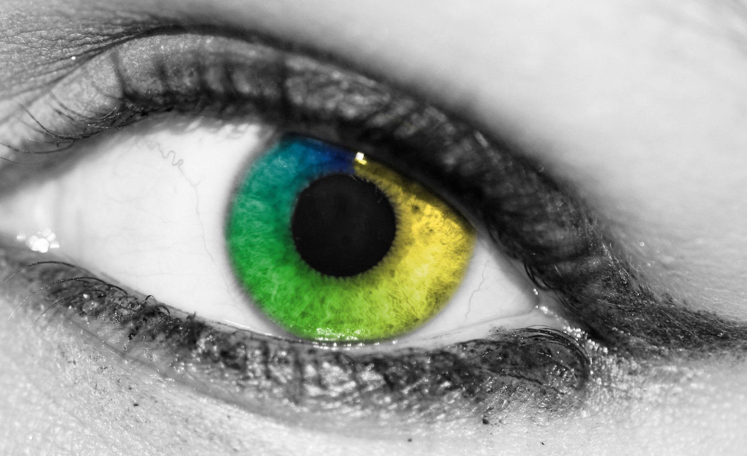 Bild mit Farben, Gegenstände, Menschen, Körperteile, Köpfe, Augen, Grün, Blau, Augenbrauen, Wimpern, Kameras und Objektive