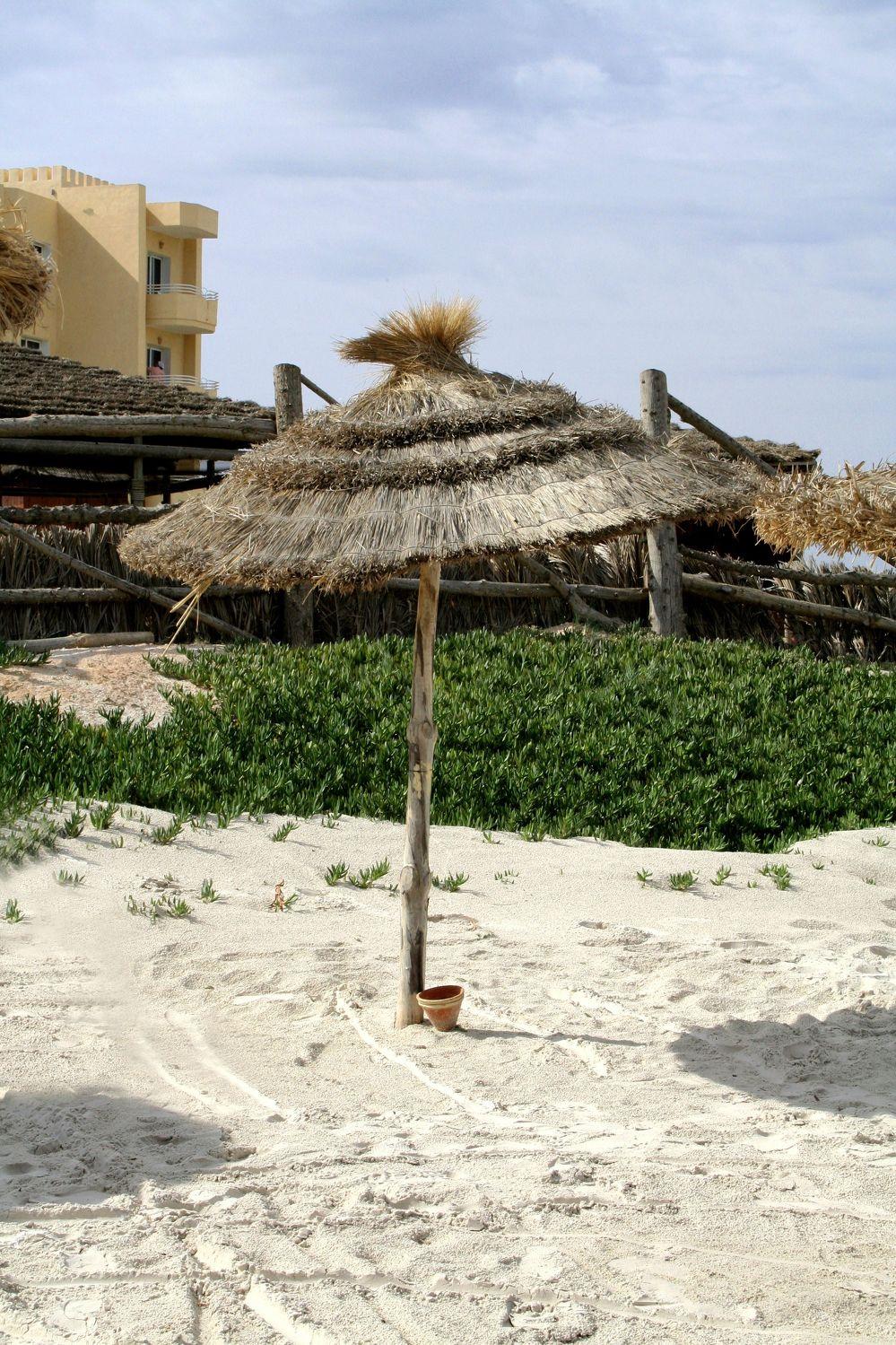Bild mit Strände, Urlaub, Regenschirme, Palmen, Sommer, schirm, Sonnenschirm