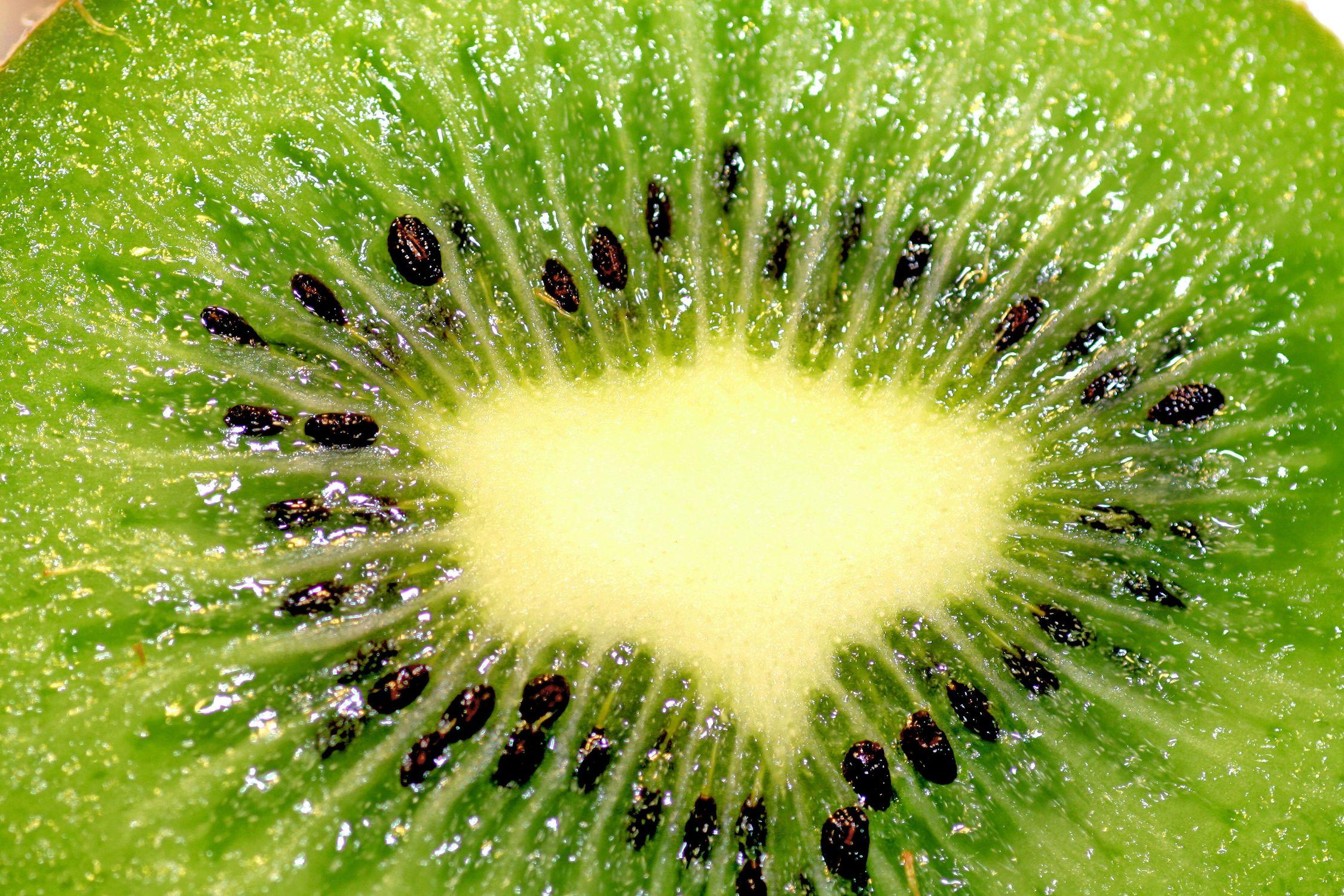 Bild mit Früchte, Lebensmittel, Frucht, Fruit, Fruits, Kiwi, Kiwies, Kiwifrucht