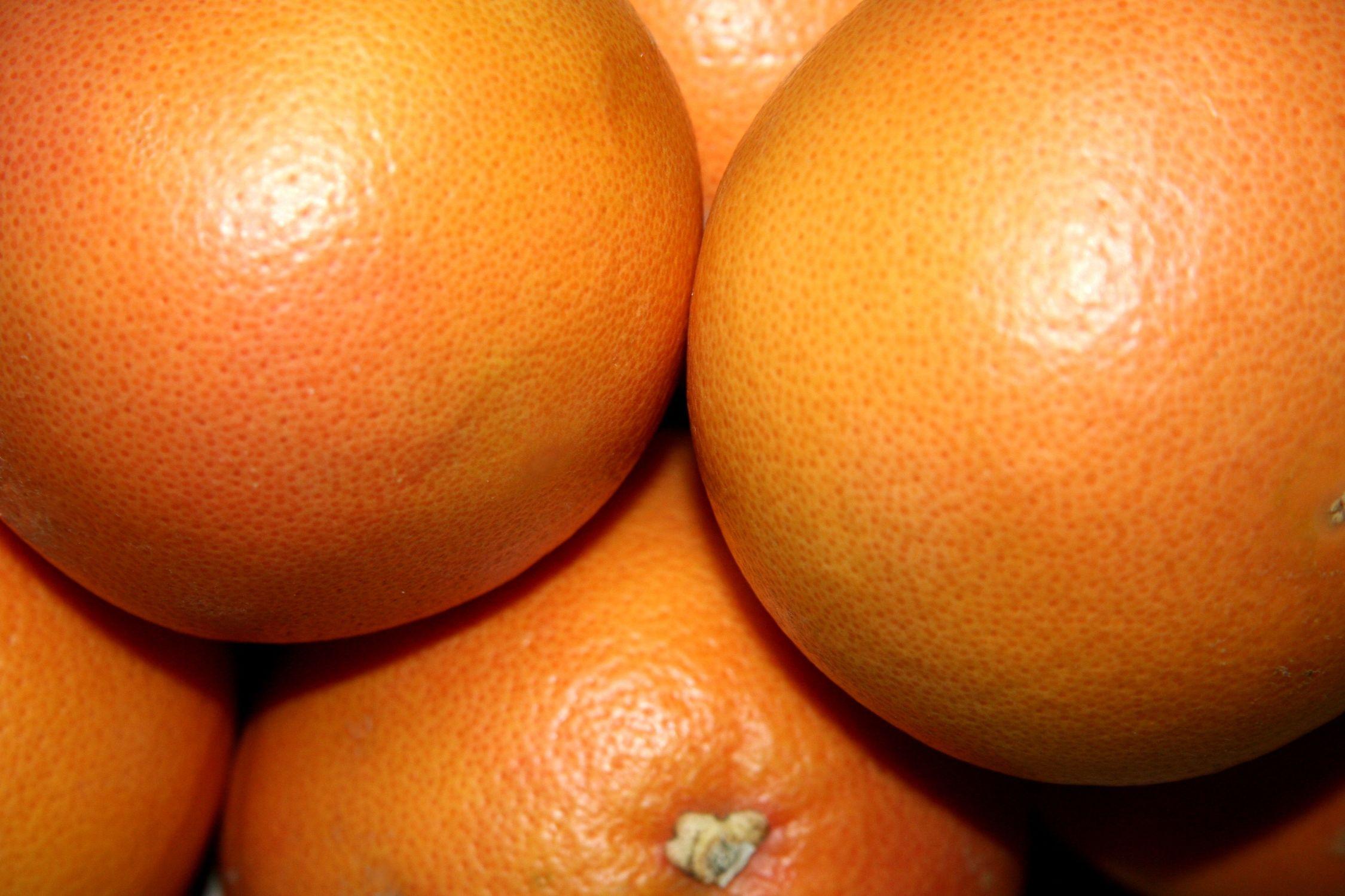 Bild mit Früchte, Lebensmittel, Essen, Zitrusfrüchte, Orangen, Grapefruits, Mandarinen, Küchenbild