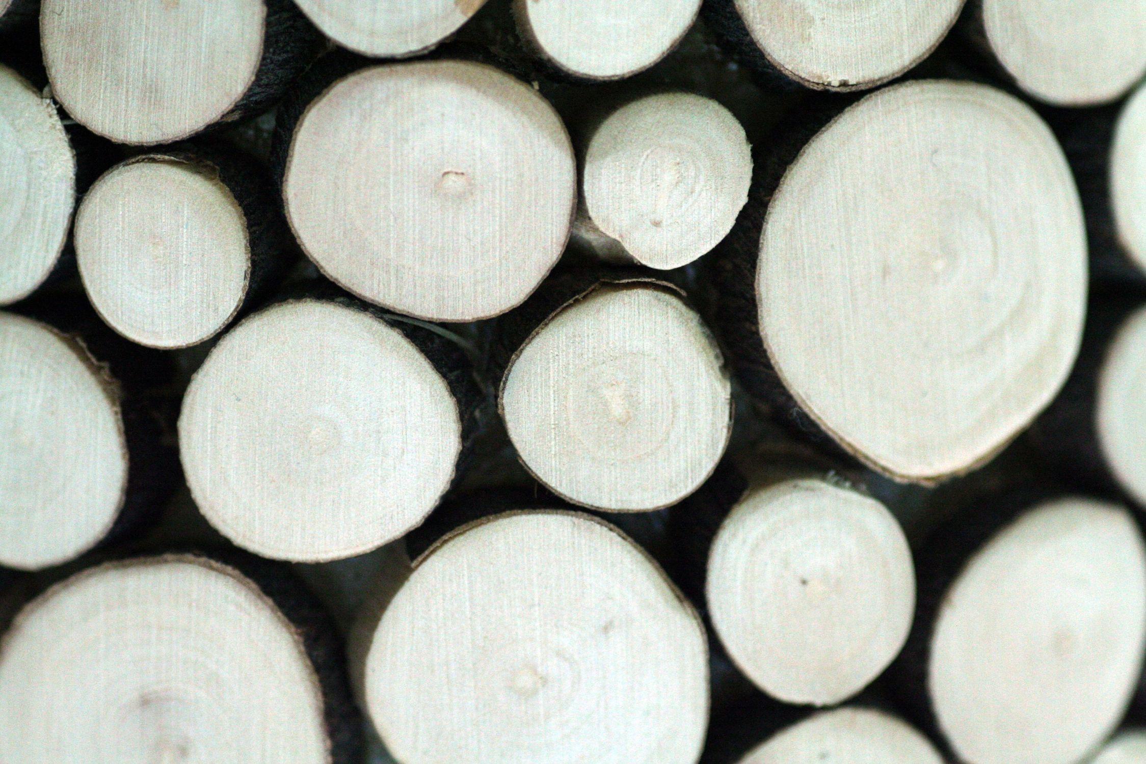 Bild mit Gegenstände, Materialien, Holz, Struktur, Holzstruktur, Hölzer