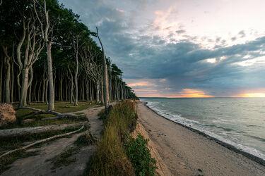 Bild mit Natur, Bäume, Küsten und Ufer, Meere, Sonnenuntergang, Sonnenaufgang, Wald, Ostsee, Landschaft, Klippen