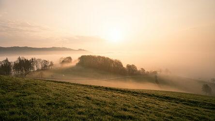 Bild mit Natur, Bäume, Nebel, Sonne, Landschaft, Sauerland