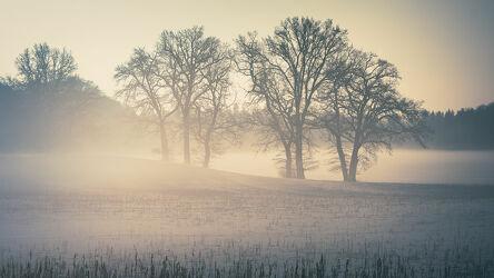 Bild mit Nebel, Nebel, Landschaft, Amper, Fürstenfeldbruck