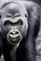 Bild mit Natur,Menschenaffen,Affe,Kinderzimmer,Zoo,Kunst fürs Kinderzimmer,Dschungel,Gorilla,King Kong,Silberrücken