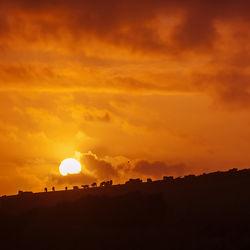 Bild mit Natur, Himmel, Sonnenuntergang, Feuer, Sonnenaufgang, Sonne, Nature, Wiese, Feld, Felder, Wiesen, Weide, Weiden