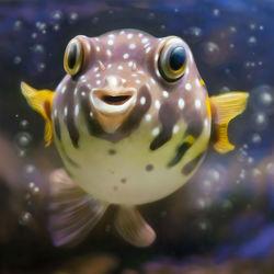Bild mit Unterwasser, Kinderzimmer, Fisch, Kugelfisch, Unterwassertiere, Kunst fürs Kinderzimmer, Rund