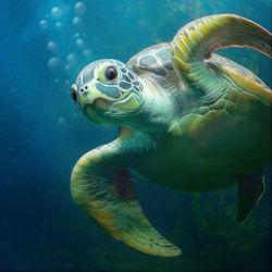 Bild mit Unterwasser, Blau, Kinderzimmer, Unterwassertiere, Unterwasserwelt, Kunst fürs Kinderzimmer, Schildkröte, Meeresschildkröte