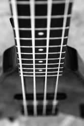 Bild mit Kunst, Musikinstrumente, Instrument, Retro, Musik, schwarz weiß, SW, Bass, Bassgitarre, Gitarre, Saiten