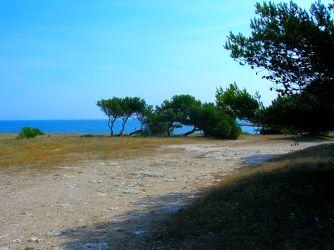 Am Meer entlang...