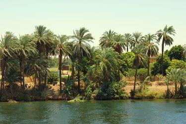 Das Nilufer...