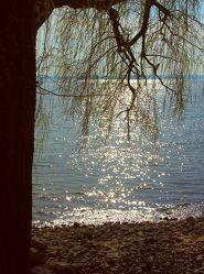 Sonnenreflexionen auf dem See